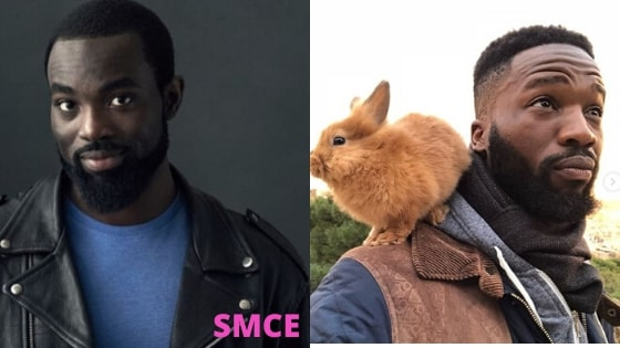 Sope Dirisu and Paapa Essiedu net worth