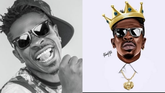 Shatta Wale freedom lyrics
