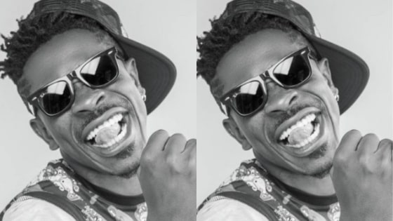 freedom Shatta Wale lyrics