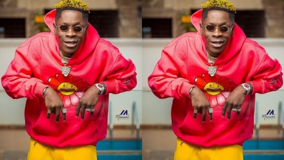 Shatta Wale 1 Don Lyrics