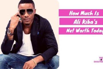 How Much Is Ali Kiba Net Worth 2021