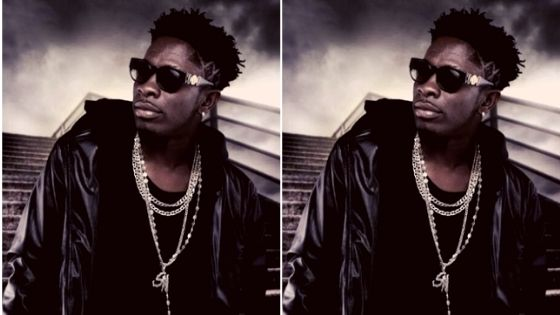 How much is Shatta Wale net worth