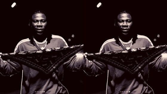 What are Stonebwoy sources of income