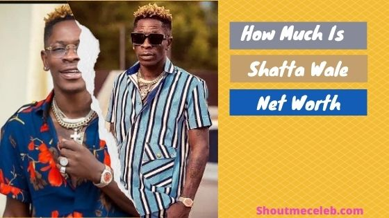What is Shatta Wale net worth